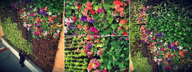 Jardines del ma ana for Caracteristicas de los jardines verticales