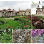 Techos Verdes para Bogotá