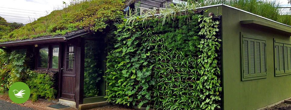 Jardines verticales y techos verdes ecotelhado colombia for Jardines verticales caseros