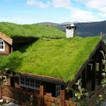 Techos verdes para reducir el ruido