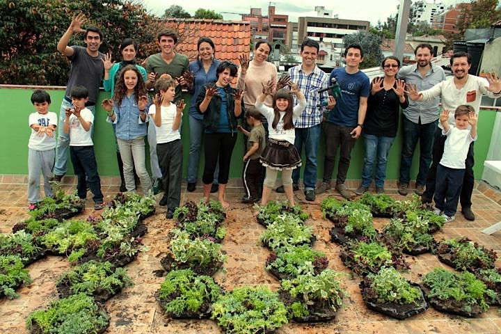 taller techos verdes y muros verdes Colombia