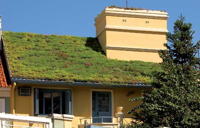 Techos Verdes reducen el flujo de agua