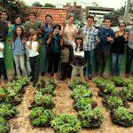Primer Taller Crea tu universo.  techos verdes y jardines verticales