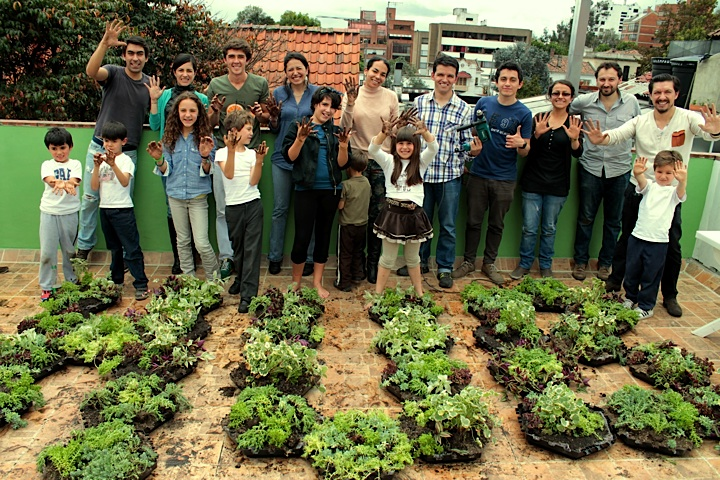 Primer taller crea tu universo techos verdes y jardines for Techos verdes y jardines verticales