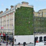 Hotel Palace en Londres y su Jardín vertical