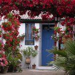 los patios en concursos se señalan con macetos de setos que se colocan flanqueando las puertas, de modo que puedan ser identificados de manera clara.