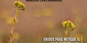 Colombia se prepara para el fenómeno del niño