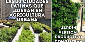 Las 10 ciudades latinas que lideran en agricultura urbana