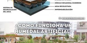 Cómo funciona un humedal artificial?