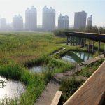 Ciudades se enfrentan al Cambio Climático