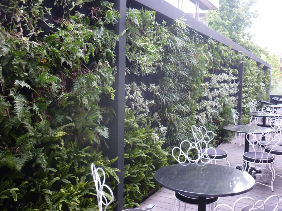Techos y jardines verticales