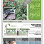 Techos verdes, ideales para recolectar aguas lluvias o grises para ser reutilizadas